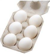 Farm Eggs 6pcs – Regular
